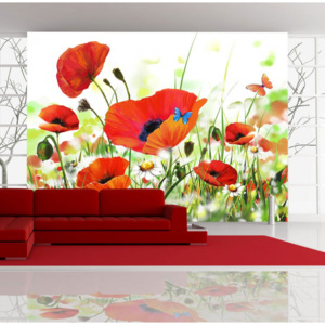 Fototapet - Country poppies 400x270