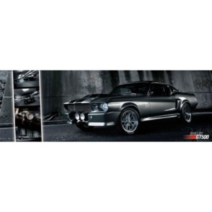 Easton - Shelby GT 500 Poster, (158 x 53 cm)