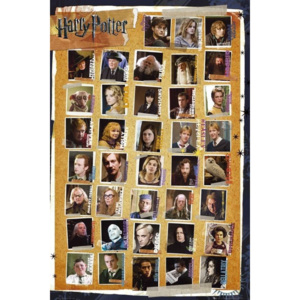 HARRY POTTER 7 - characters Poster, (61 x 91,5 cm)