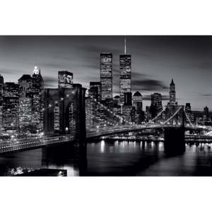 Brooklyn bridge (B&W) Poster, (91,5 x 61 cm)