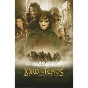 LORD OF THE RINGS - fellowship Poster, (61 x 91,5 cm)