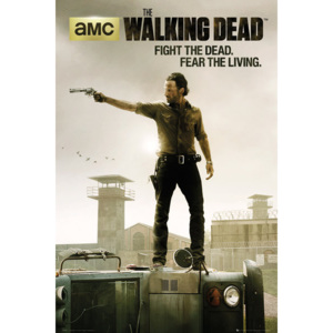 WALKING DEAD - season 3 Poster, (61 x 91,5 cm)