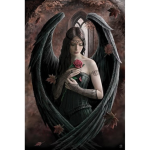 Anne Stokes - angel rose Poster, (61 x 91,5 cm)