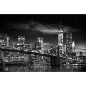 New York - Freedom Tower (B&W) Poster, (91,5 x 61 cm)