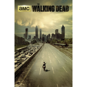 THE WALKING DEAD - city Poster, (61 x 91,5 cm)