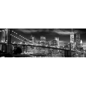 New York - Freedom Tower (B&W) Poster, (158 x 53 cm)