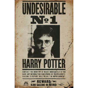 HARRY POTTER - Undesirable n1 Poster, (61 x 91,5 cm)