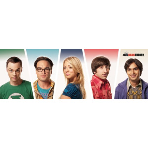 The Big Bang Theory - Cast Poster, (91,5 x 30 cm)