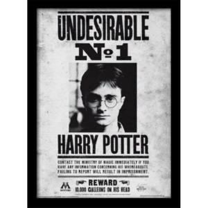 Harry Potter - Undesirable No1 Afiș înrămat