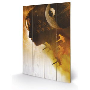 Rogue One: Star Wars Story - Jyn Silhouette Pictură pe lemn, (40 x 59 cm)