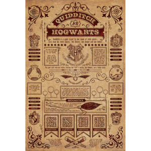 Harry Potter - Quidditch At Hogwarts Poster, (61 x 91,5 cm)
