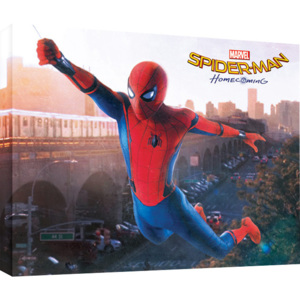 Spider-Man Homecoming - Swing Tablou Canvas, (60 x 80 cm)