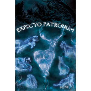 Harry Potter - Patronus Poster, (61 x 91,5 cm)