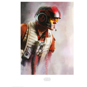 Star Wars The Last Jedi - Poe Paint Reproducere, (60 x 80 cm)