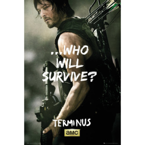 The Walking Dead - Daryl Survive Poster, (61 x 91,5 cm)