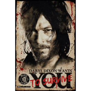 The Walking Dead - Daryl Needs You Poster, (61 x 91,5 cm)