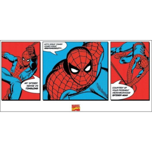 Spider-Man - Triptych Reproducere, (100 x 50 cm)