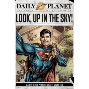 Superman - Daily Planet Poster, (61 x 91,5 cm)