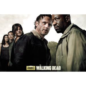 The Walking Dead - Season 6 Poster, (91,5 x 61 cm)