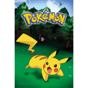 Pokemon - Pikachu Catch Poster, (61 x 91,5 cm)