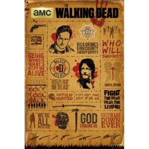 Walking Dead - Infographic Poster, (61 x 91,5 cm)