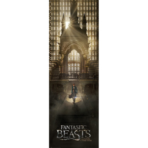 Fantastic Beasts And Where To Find Them - Teaser Poster, (53 x 158 cm)