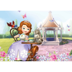 Disney Sofia First Fototapet, (104 x 70.5 cm)
