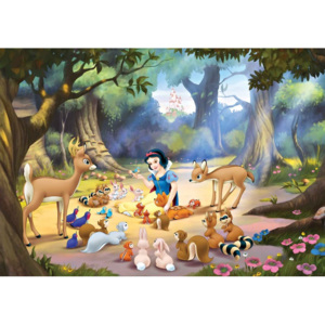 Disney Princesses Snow White Fototapet, (312 x 219 cm)