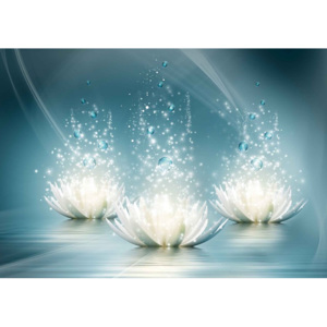 White Lotus Flowers Drops Fototapet, (104 x 70.5 cm)