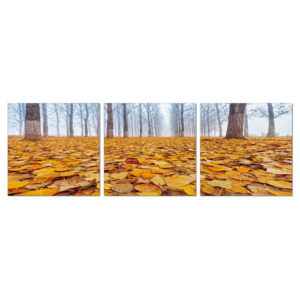 Ground covered with leaves Tablou, (120 x 40 cm)