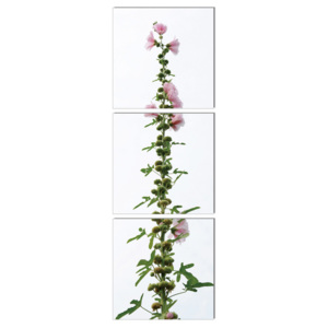 Modern design - flower with pink blossoms Tablou, (40 x 120 cm)