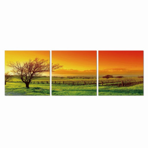 Sunset over the pasture Tablou, (180 x 60 cm)