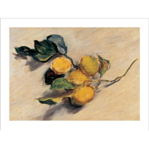 Branch from a Lemon Tree Reproducere, Claude Monet, (70 x 50 cm)