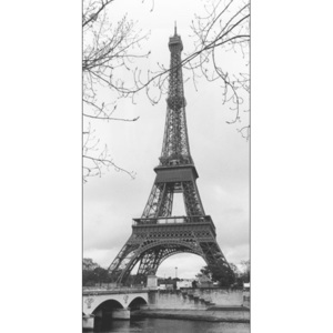 Paris - Eiffel tower Reproducere, MANUELA HOEFER, (50 x 100 cm)