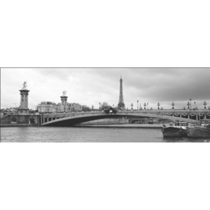 Paris - Pont Alexandre-III and Eiffel tower Reproducere, MURAT TANER, (100 x 35 cm)