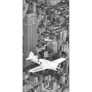 Hawks airplane in flight over New York city, 1938 Reproducere, (100 x 50 cm)
