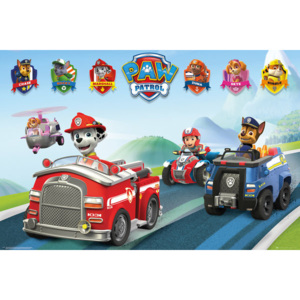 Paw Patrol - Vehicles Poster, (91,5 x 61 cm)