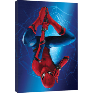 Spider-Man Homecoming - Hang Tablou Canvas, (60 x 80 cm)