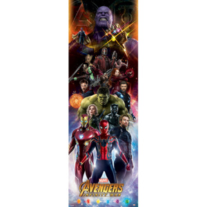 Avengers Infinity War - Characters Poster, (53 x 158 cm)