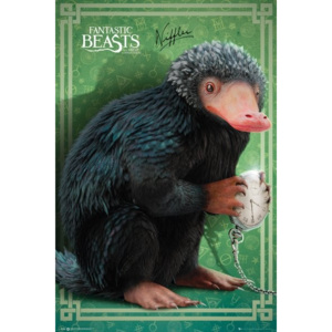 Fantastic Beasts and Where To Find Them - Niffler Poster, (61 x 91,5 cm)