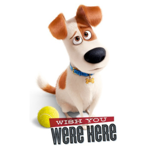Poster - The Secret Life of Pets (Wish You Were Here)