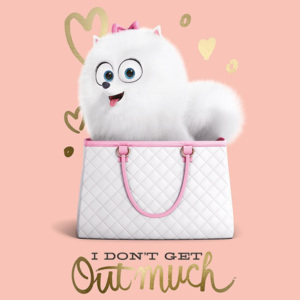 Poster - The Secret Life of Pets (I Do not Get Out Much)