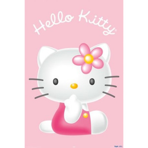 Poster - Hello Kitty 3d
