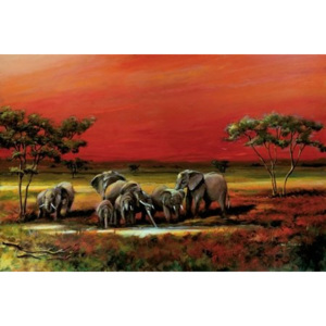 Poster - African style elephants