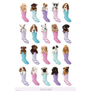 Poster - Puppies in Holinks