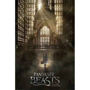 Poster - Fantastic Beasts and Where to Find Them (2)