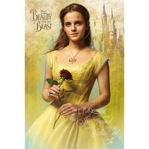 Poster - Beaty and the Beast (2)
