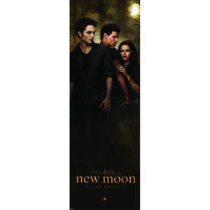 Poster - Twilight New Moon-Woods