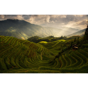 Fotografii artistice A Tuscan Feel in China, Max Witjes