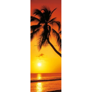 Poster - Palm Sunset